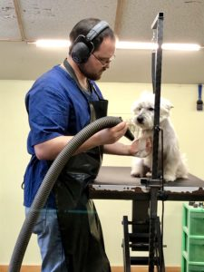 Head groomer at Willow Farm Pet Services in Vermont