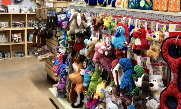 Toys and more at Willow Farm Pet Services in Vermont